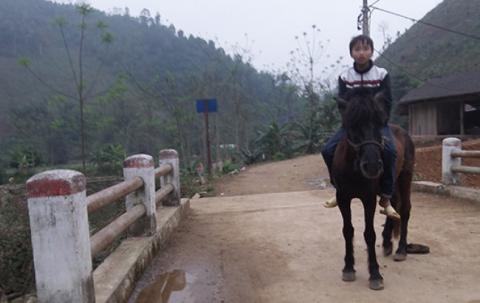 A boy rides a horse.
