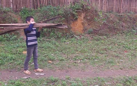 A boy carries firewood.