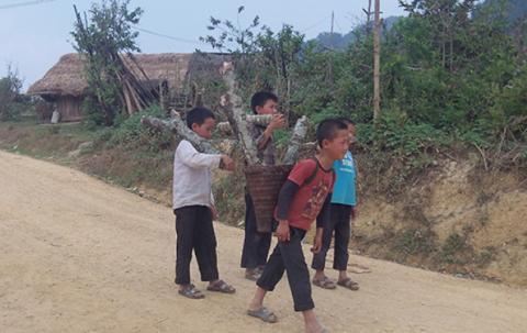 Boys carry wood.