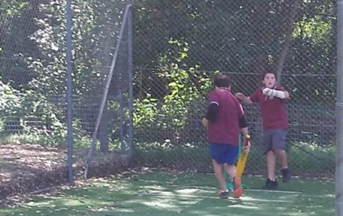 Jacob and Lewis playing cricket